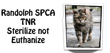 RSPCA S not E
